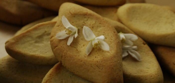 Combien de calories dans les navettes la fleur d oranger - Combien de calories dans une coupe de champagne ...