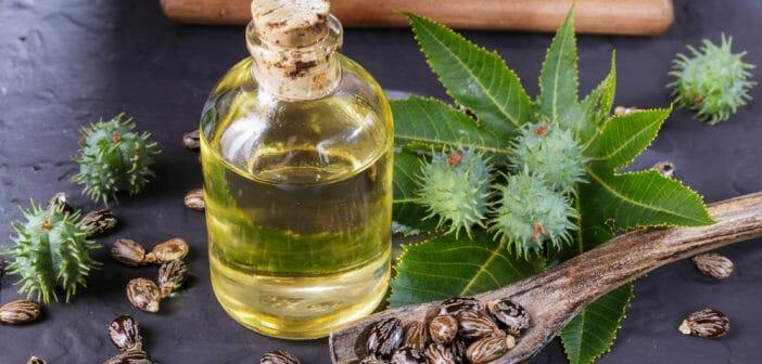 L'huile de ricin bio peut-elle gommer la cellulite ?