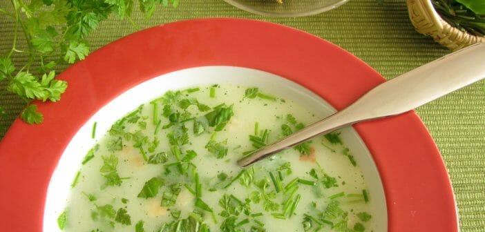 Chervil soup: benefits and calories
