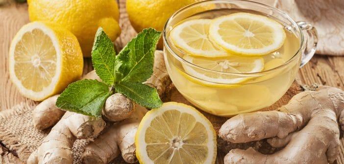 Le mélange citron/gingembre/menthe, efficace pour maigrir ?