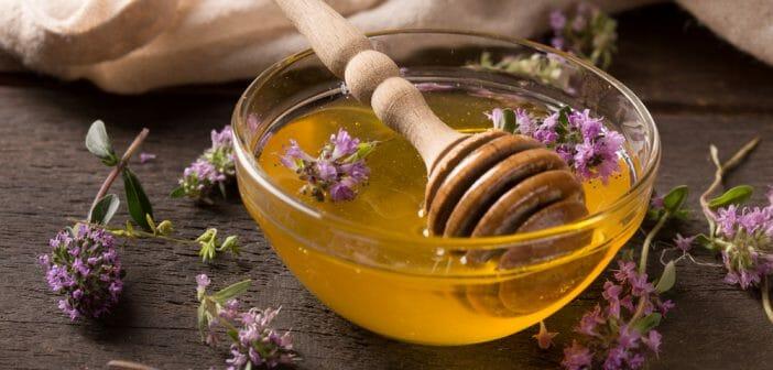 miel de thym vergetures