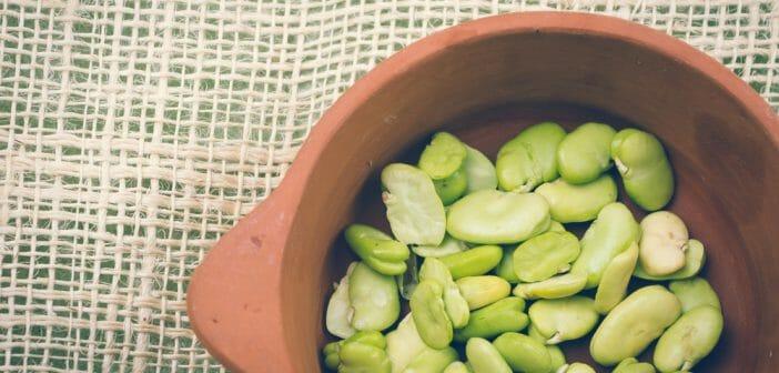 Les haricots de Lima : quels bienfaits pendant un régime