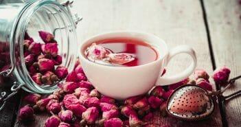 Thé ou infusion : que préférer pour maigrir