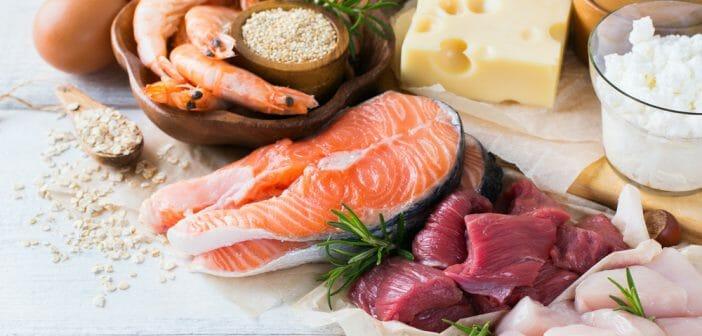 Combien de protéines par jour pour maigrir ? - Le blog
