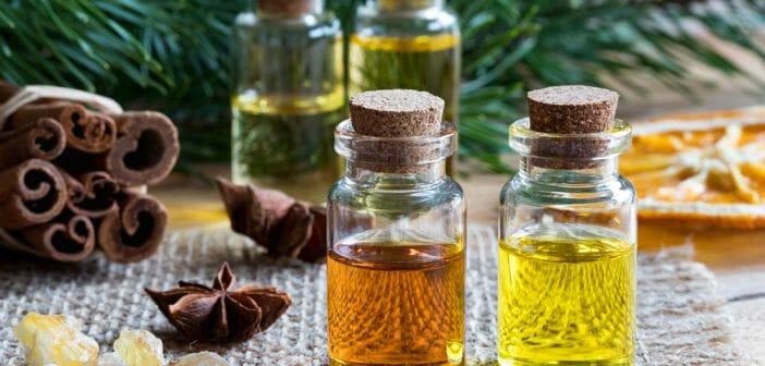 L'huile de cannelle : une alliée ventre plat ?