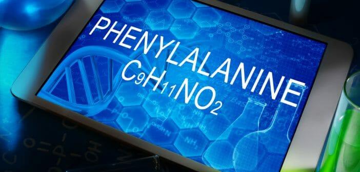 La phenylalanine : des effets coupe faim