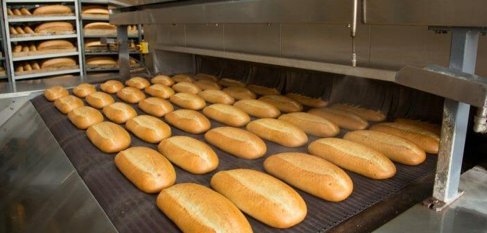 Le pain industriel fait il grossir le blog - Le potimarron fait il grossir ...