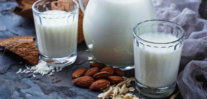 Comment faire un régime hyperprotéiné sans lactose ?