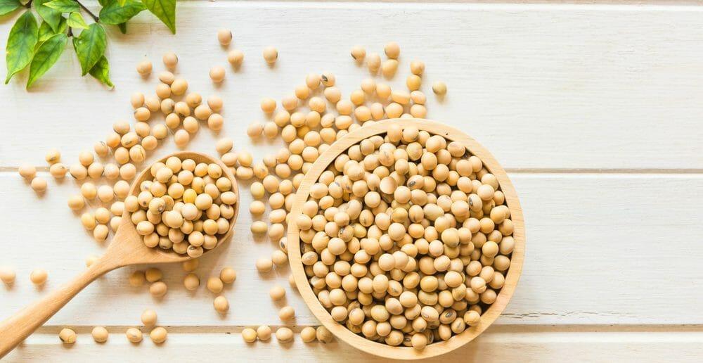 le-soja-ideal-pour-favoriser-l-allaitement